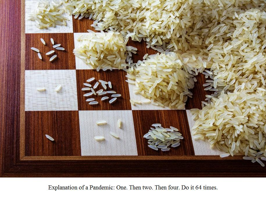Chess/Rice